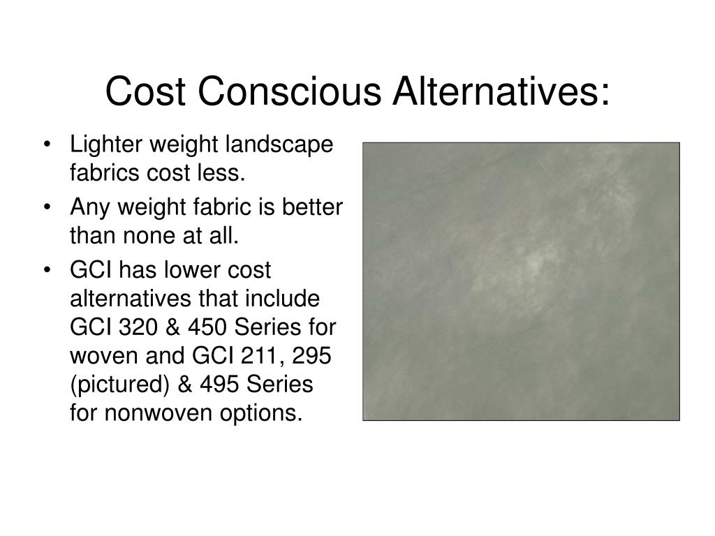 Cost Conscious Alternatives: