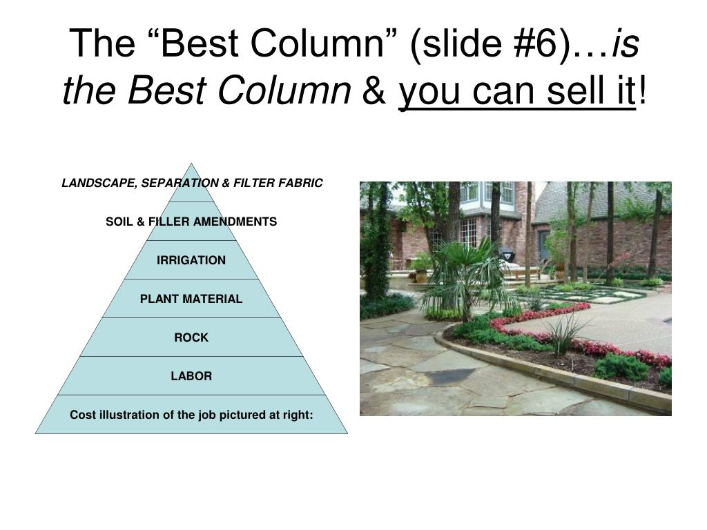 "The ""Best Column"" (slide #6)…"