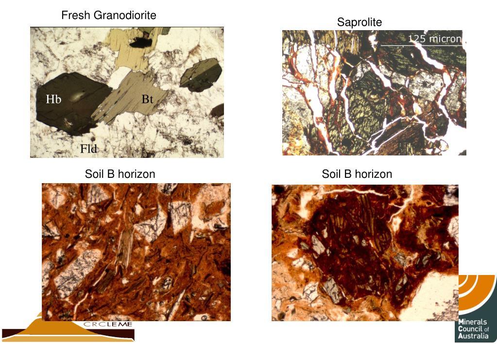Fresh Granodiorite