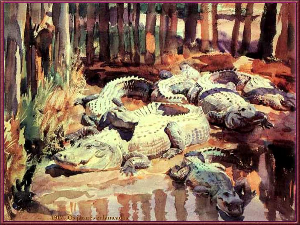 1917 - Os jacarés enlameados