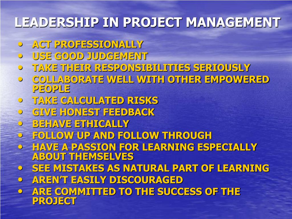 LEADERSHIP IN PROJECT MANAGEMENT