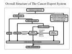 overall structure of the cancer expert system
