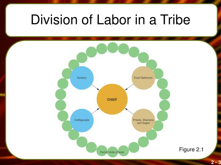 Division of labor in a tribe
