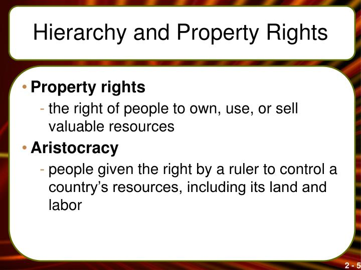 Hierarchy and Property Rights