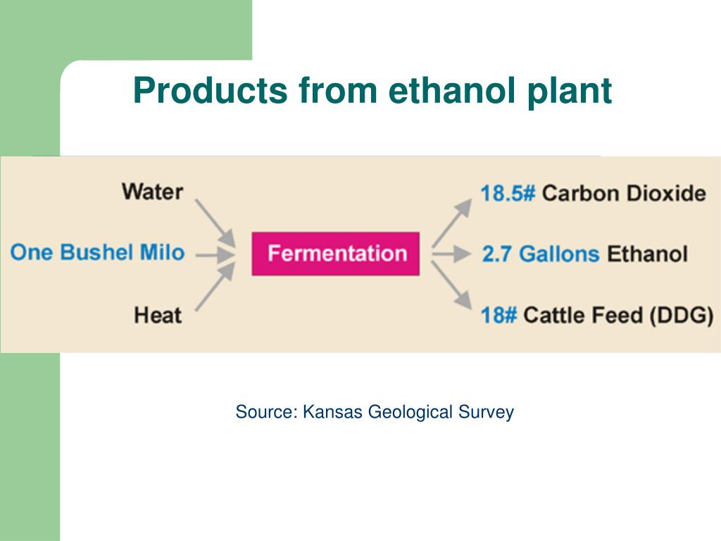Products from ethanol plant