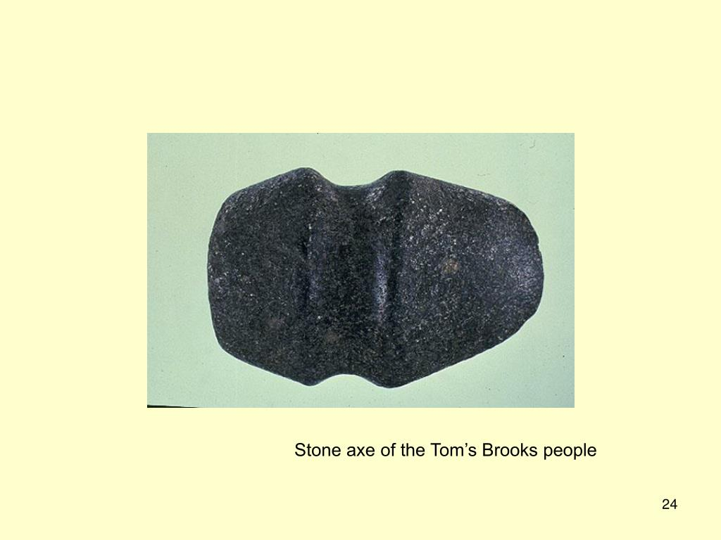 Stone axe of the Tom's Brooks people