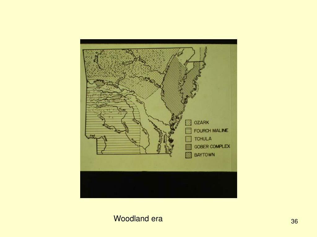 Woodland era