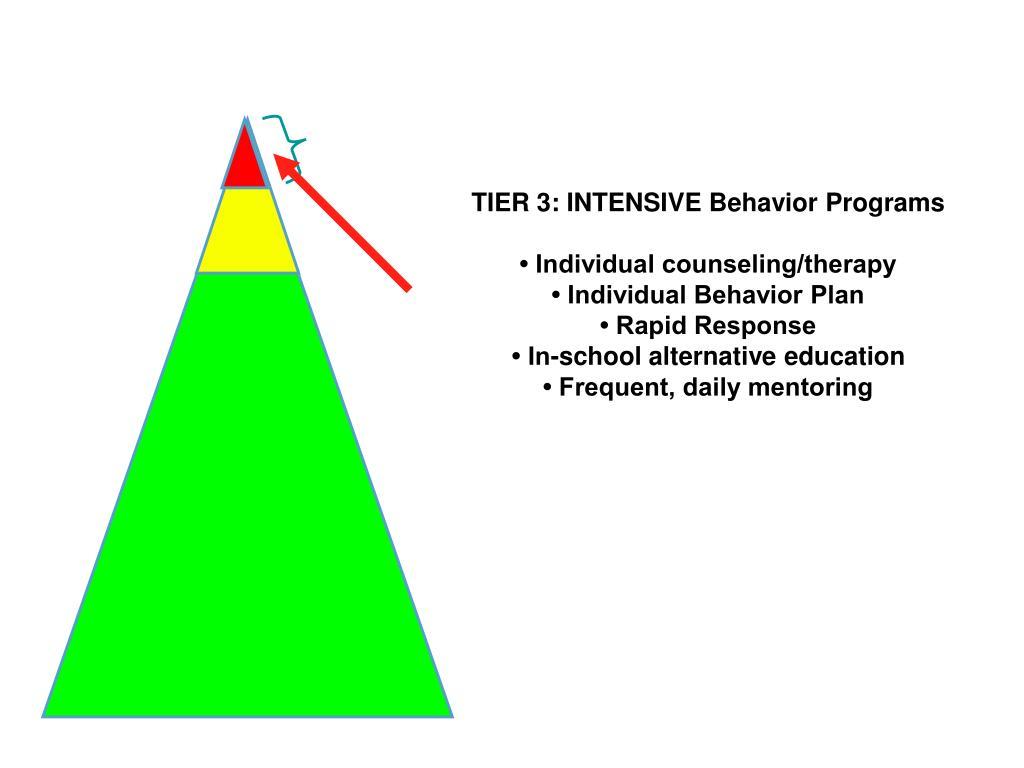 TIER 3: INTENSIVE Behavior Programs
