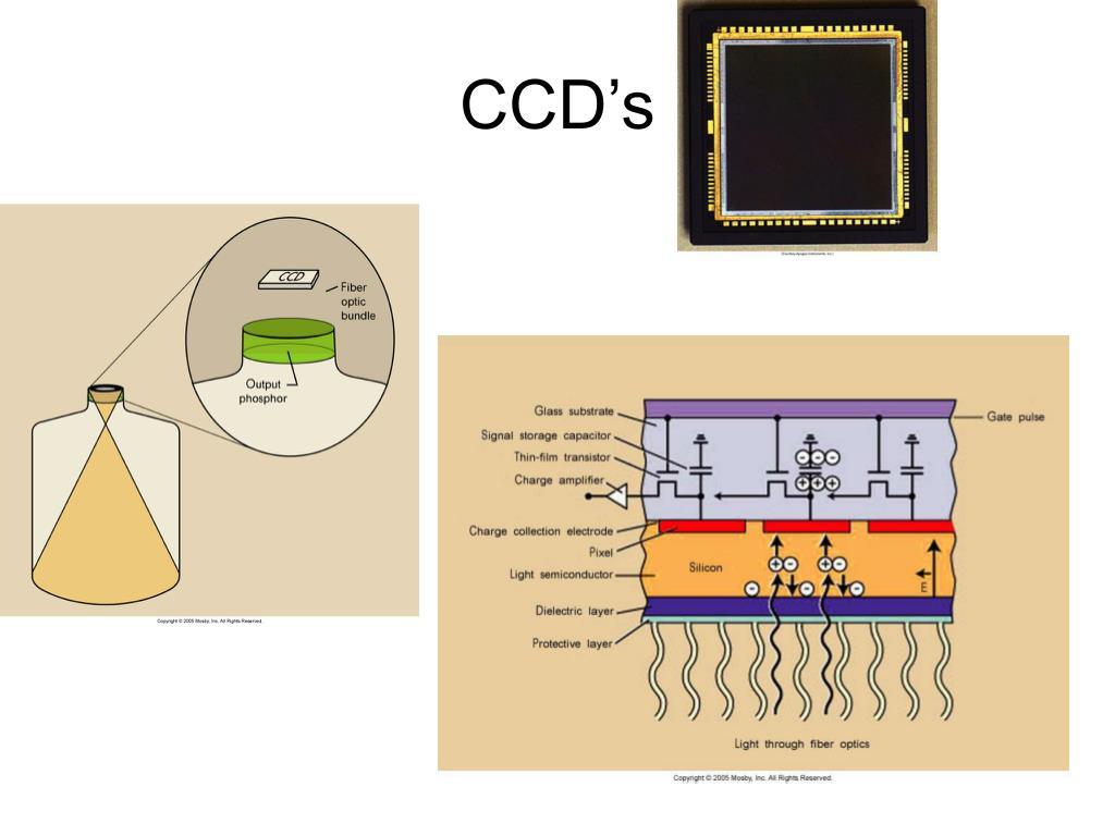 CCD's