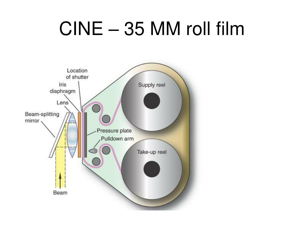 CINE – 35 MM roll film