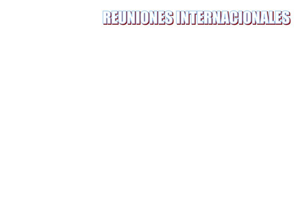 REUNIONES INTERNACIONALES