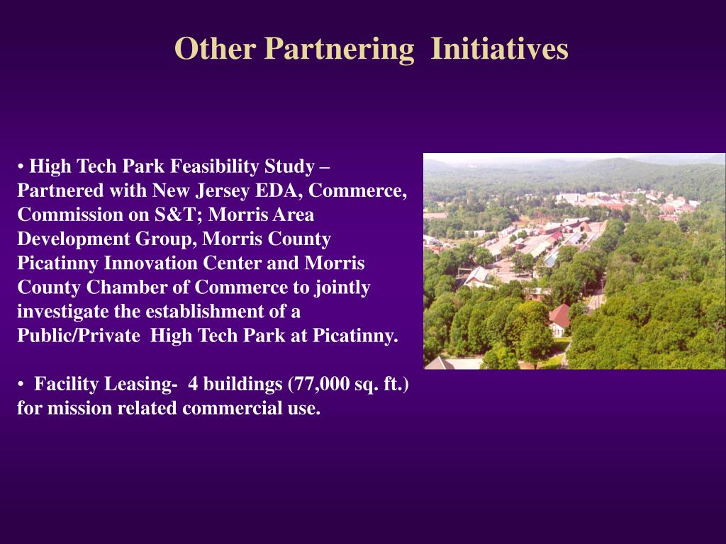 Other Partnering  Initiatives