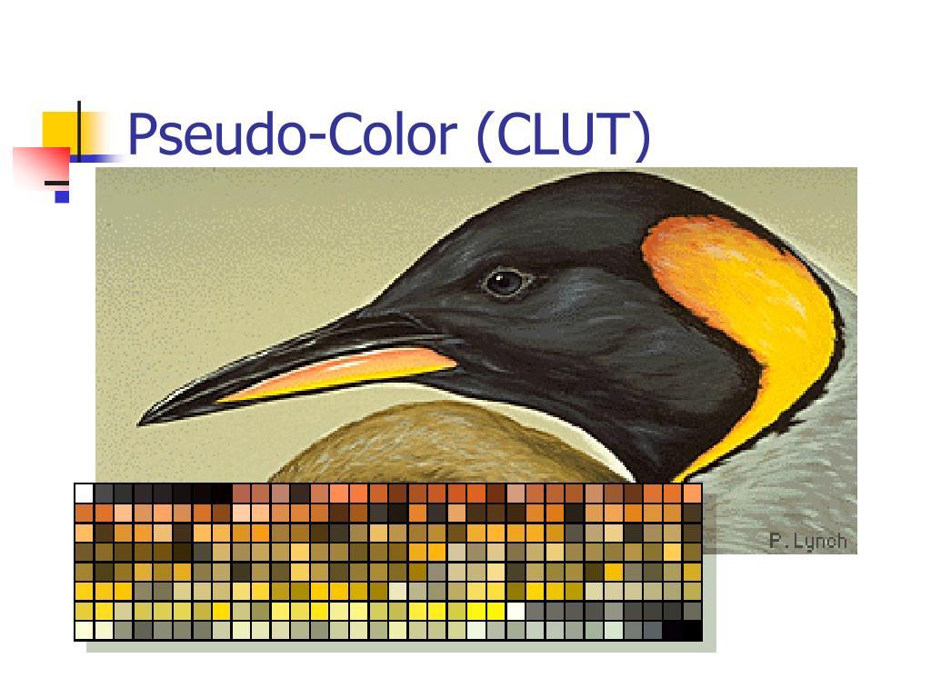 Pseudo-Color (CLUT)