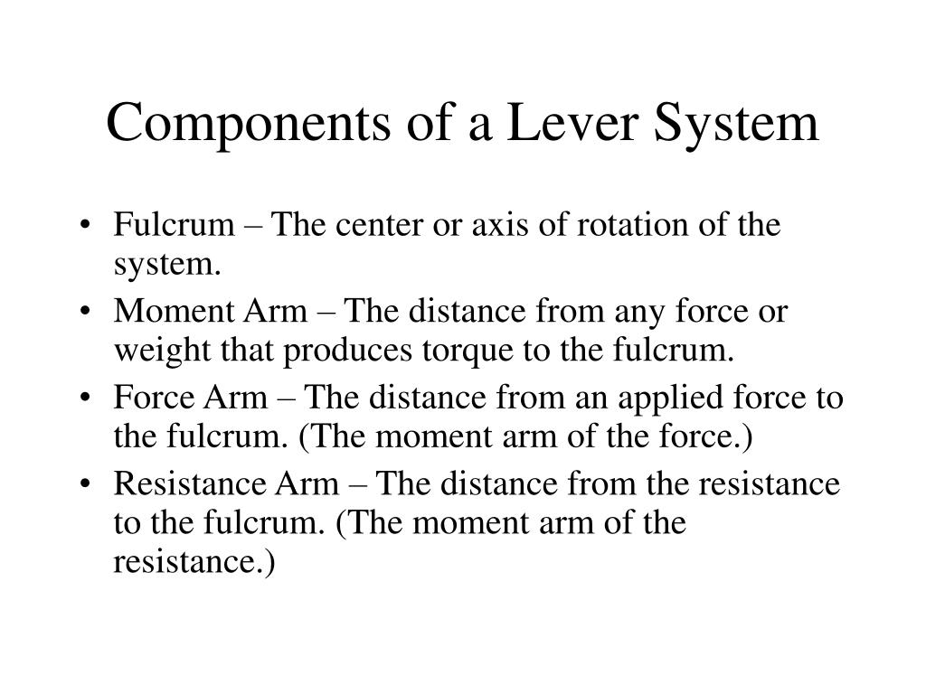 Components of a Lever System
