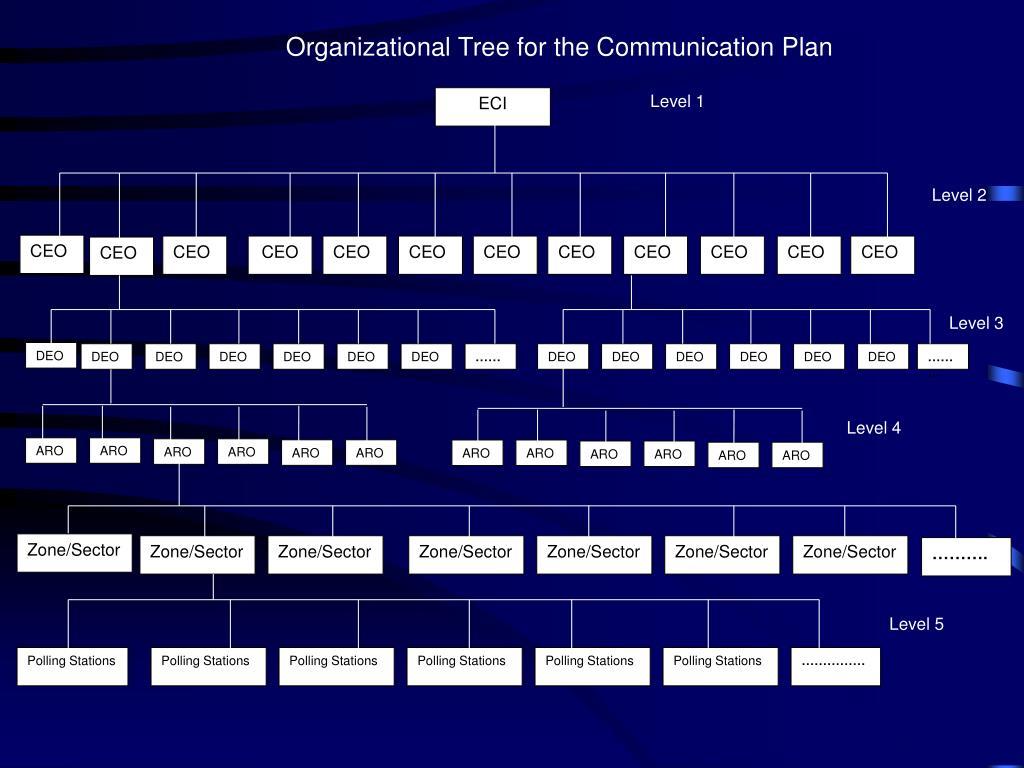 Organizational Tree for the Communication Plan