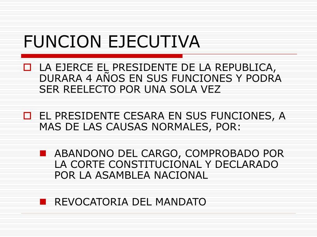 FUNCION EJECUTIVA