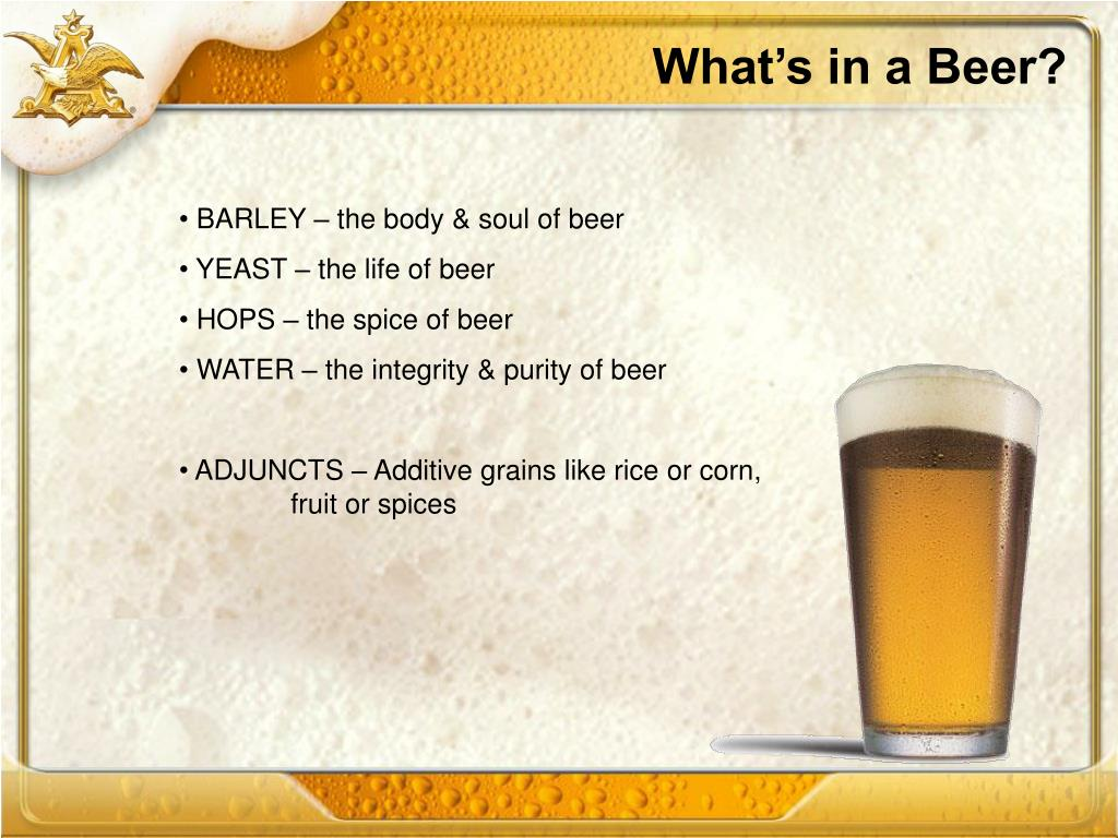 What's in a Beer?
