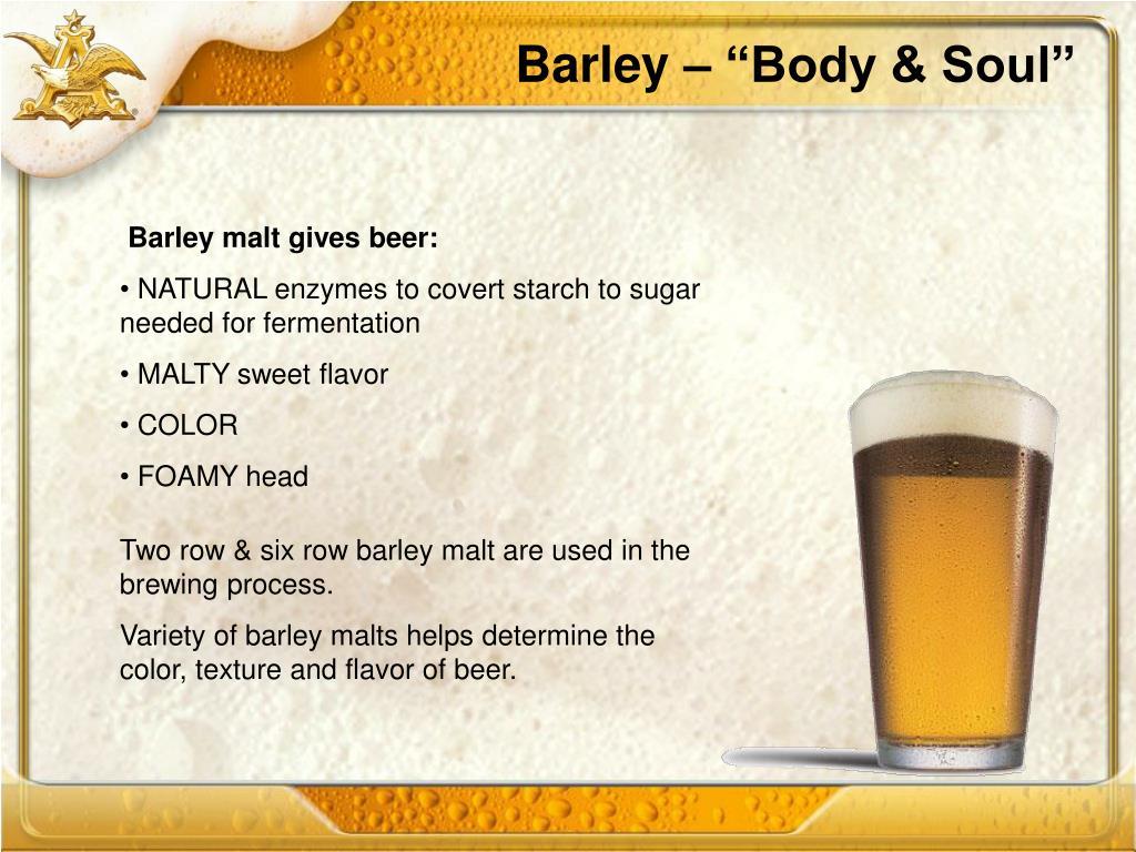"Barley – ""Body & Soul"""