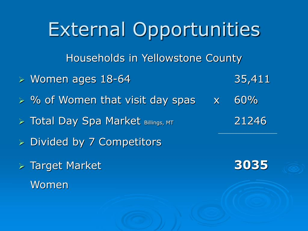External Opportunities