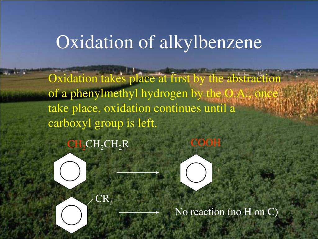 Oxidation of alkylbenzene