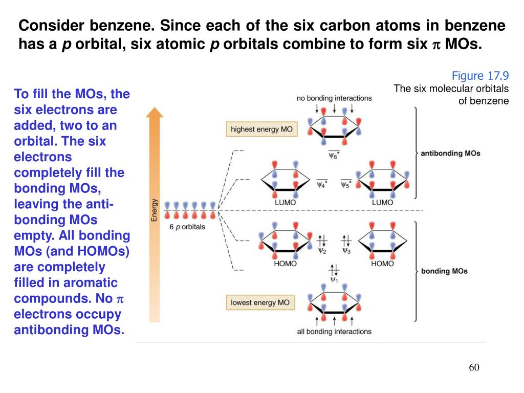 Consider benzene. Since each of the six carbon atoms in benzene has a