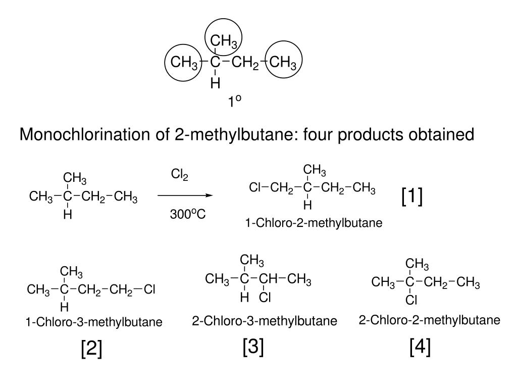 Monochlorination of 2-methylbutane: four products obtained