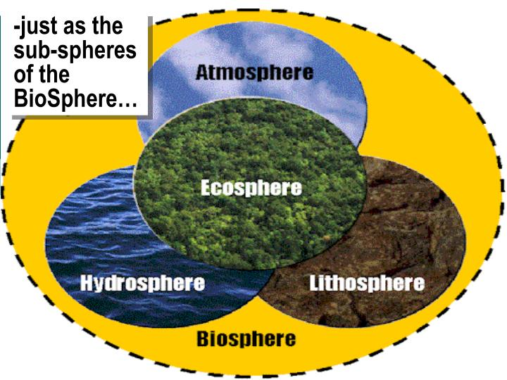 -just as the sub-spheres of the BioSphere…