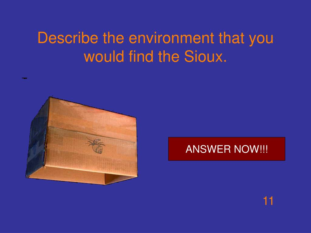Describe the environment that you would find the Sioux.