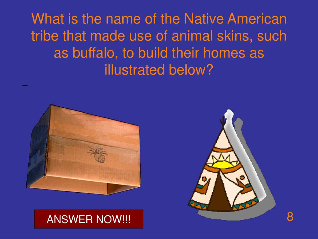 What is the name of the Native American tribe that made use of animal skins, such as buffalo, to build their homes as illustrated below?