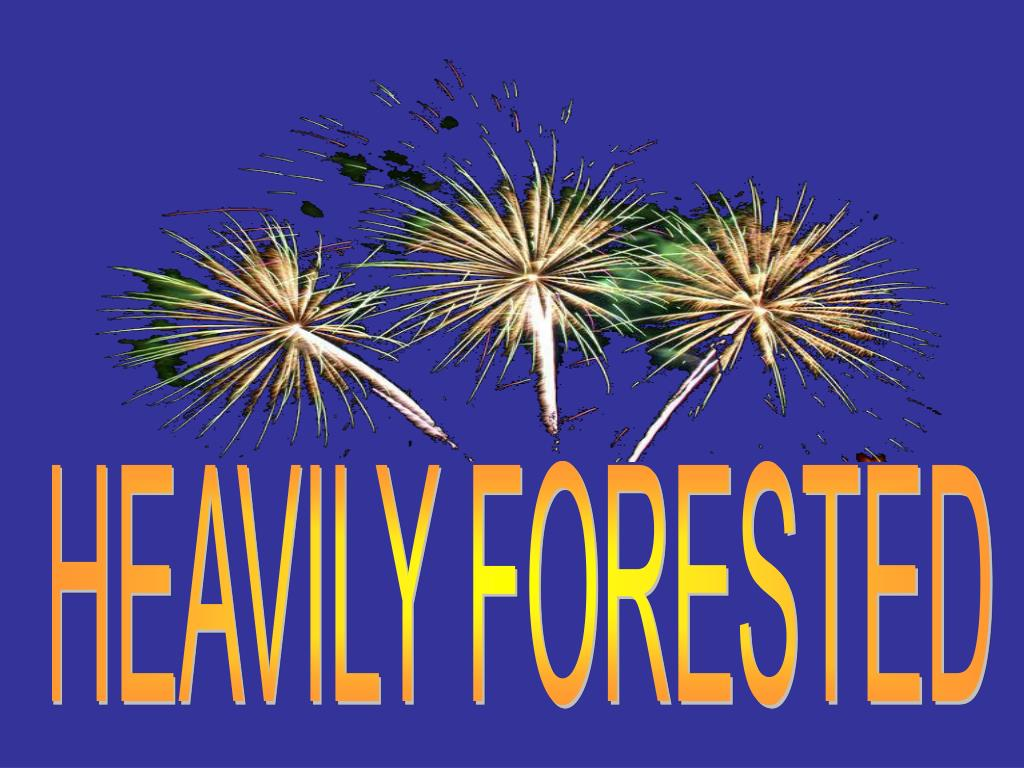 HEAVILY FORESTED