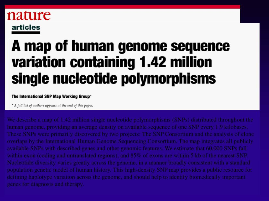 We describe a map of 1.42 million single nucleotide polymorphisms (SNPs) distributed throughout the human genome, providing an average density on available sequence of one SNP every 1.9 kilobases. These SNPs were primarily discovered by two projects: The SNP Consortium and the analysis of clone overlaps by the International Human Genome Sequencing Consortium. The map integrates all publicly available SNPs with described genes and other genomic features. We estimate that 60,000 SNPs fall within exon (coding and untranslated regions), and 85% of exons are within 5 kb of the nearest SNP. Nucleotide diversity varies greatly across the genome, in a manner broadly consistent with a standard population genetic model of human history. This high-density SNP map provides a public resource for defining haplotype variation across the genome, and should help to identify biomedically important genes for diagnosis and therapy.