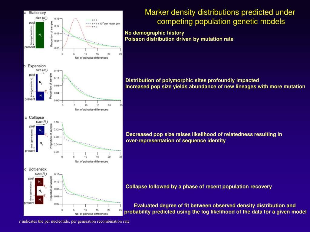 Marker density distributions predicted under