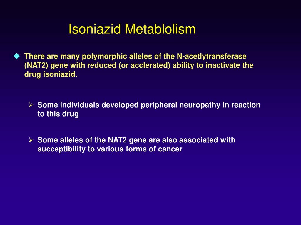 Isoniazid Metablolism