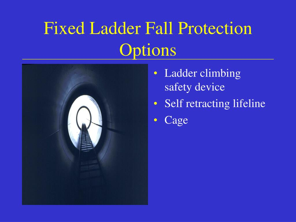 Fixed Ladder Fall Protection Options
