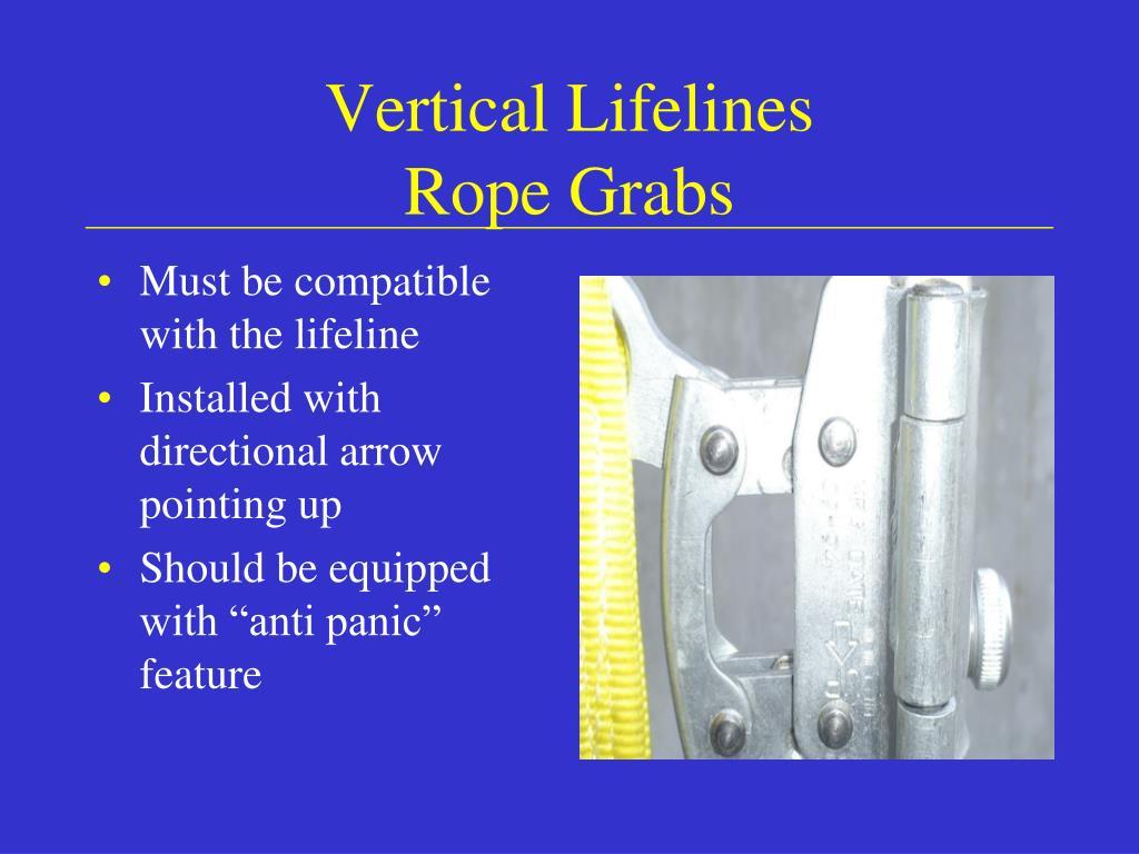 Vertical Lifelines