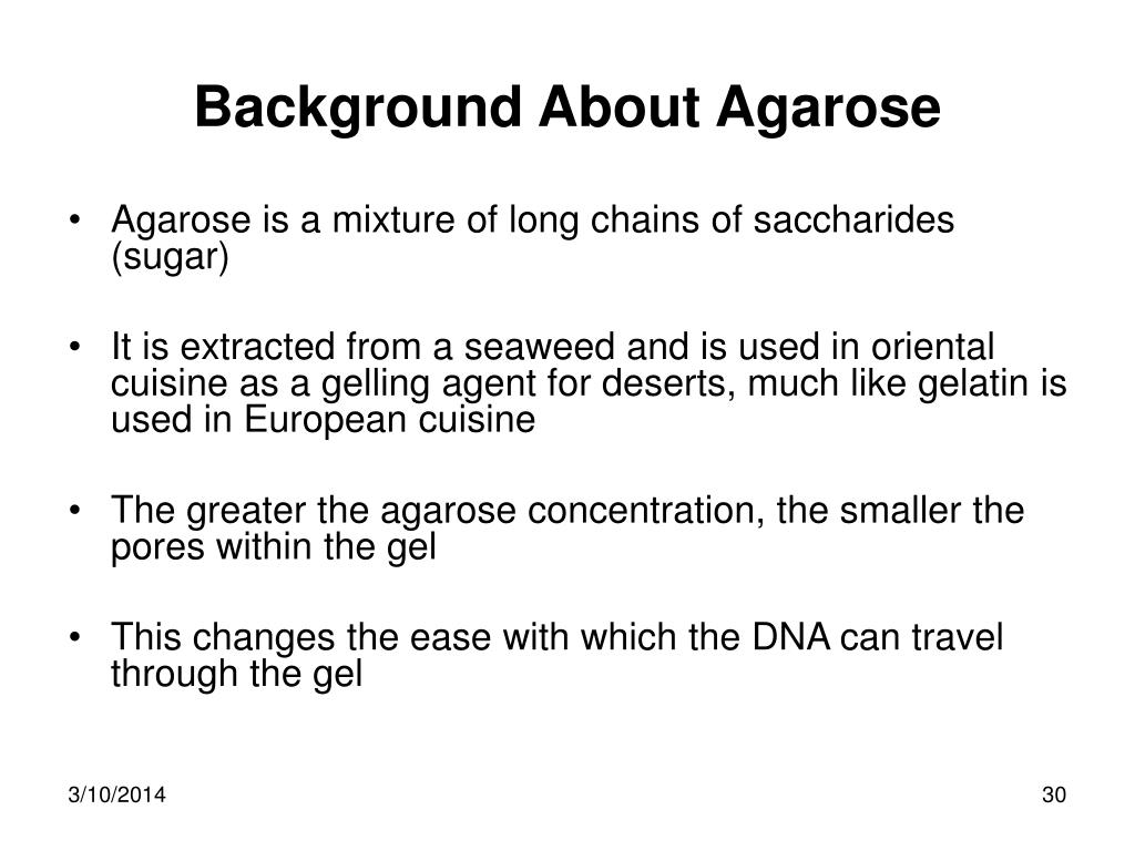 Background About Agarose