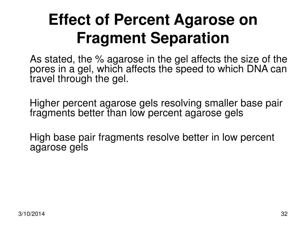 Effect of Percent Agarose on Fragment Separation