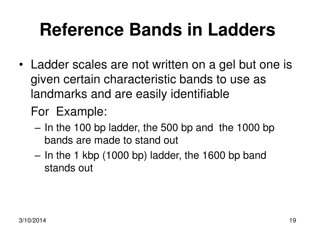 Reference Bands in Ladders