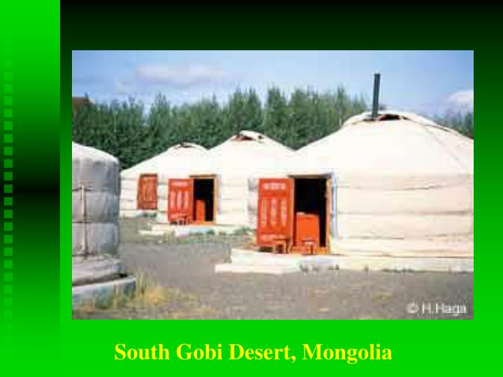 South Gobi Desert, Mongolia