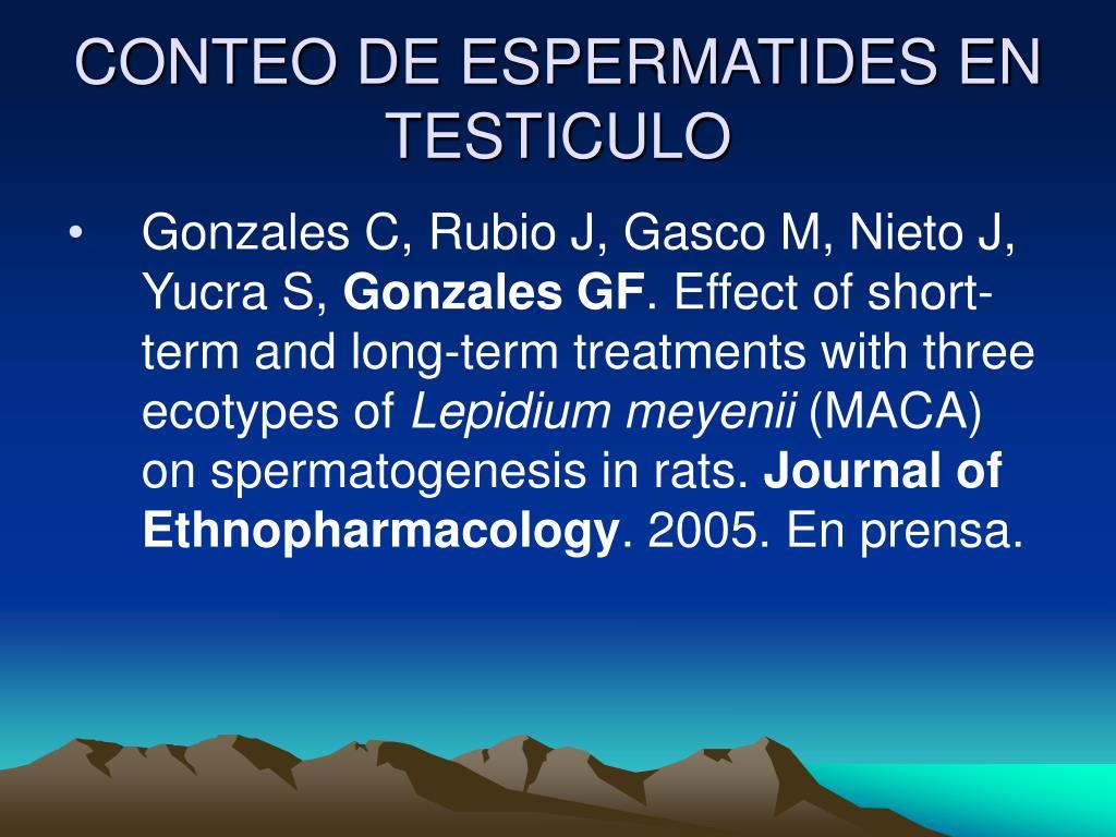 CONTEO DE ESPERMATIDES EN TESTICULO