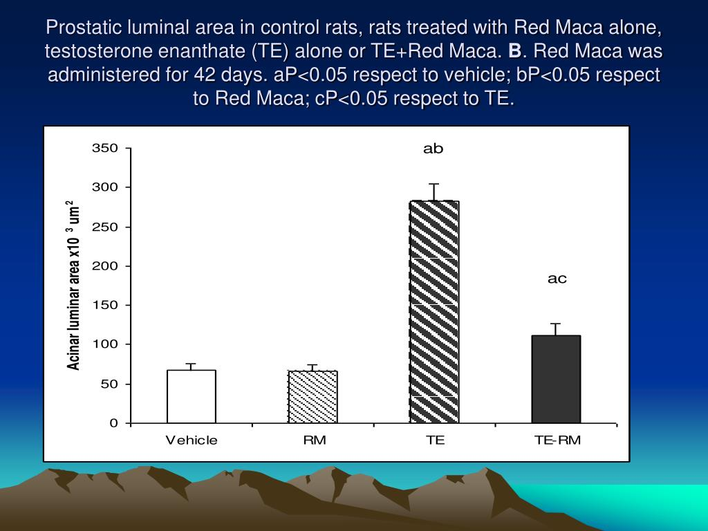 Prostatic luminal area in control rats, rats treated with Red Maca alone, testosterone enanthate (TE) alone or TE+Red Maca.