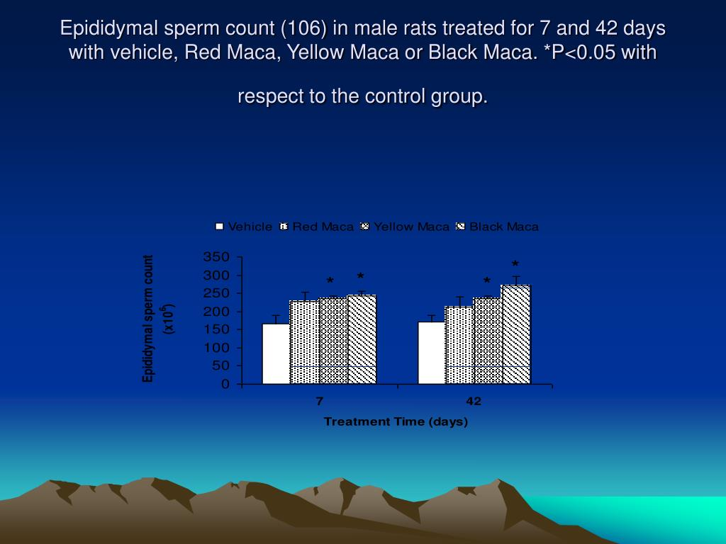 Epididymal sperm count (106) in male rats treated for 7 and 42 days with vehicle, Red Maca, Yellow Maca or Black Maca. *P<0.05 with respect to the control group.