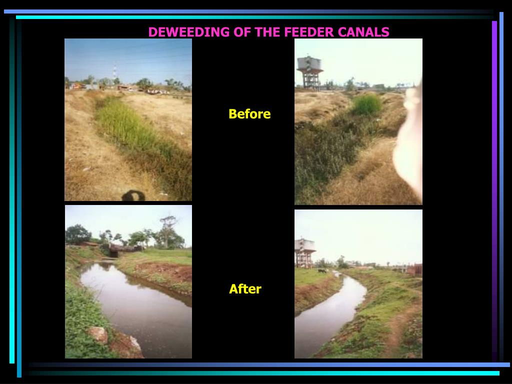 DEWEEDING OF THE FEEDER CANALS