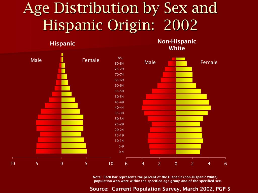 Age Distribution by Sex and Hispanic Origin:  2002