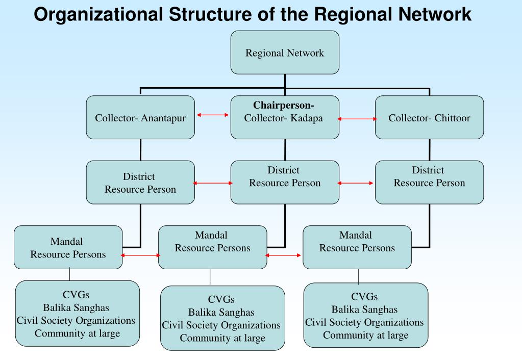 Organizational Structure of the Regional Network
