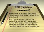 rem rapid eye movement
