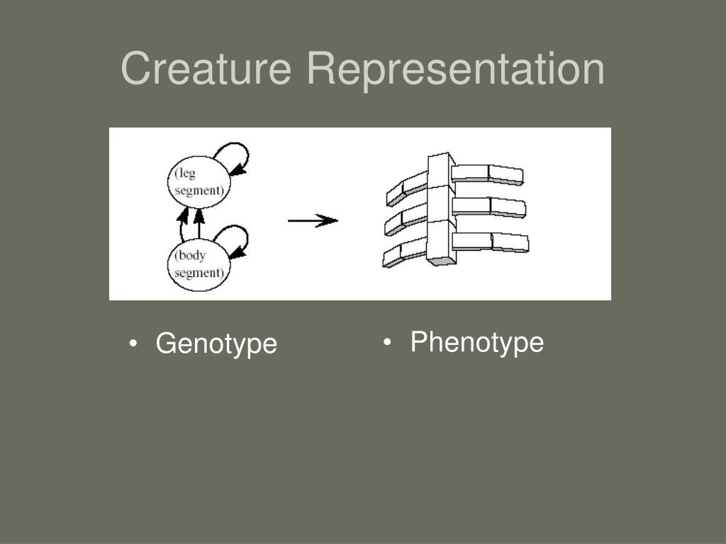 Creature Representation