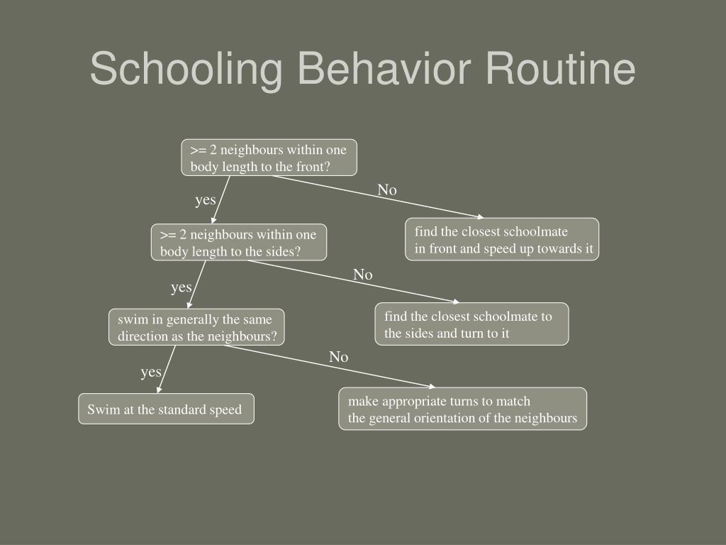 Schooling Behavior Routine