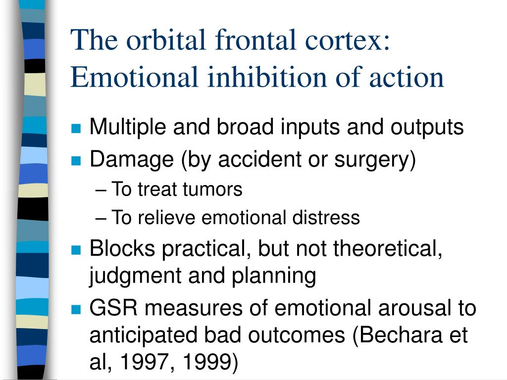 The orbital frontal cortex: Emotional inhibition of action