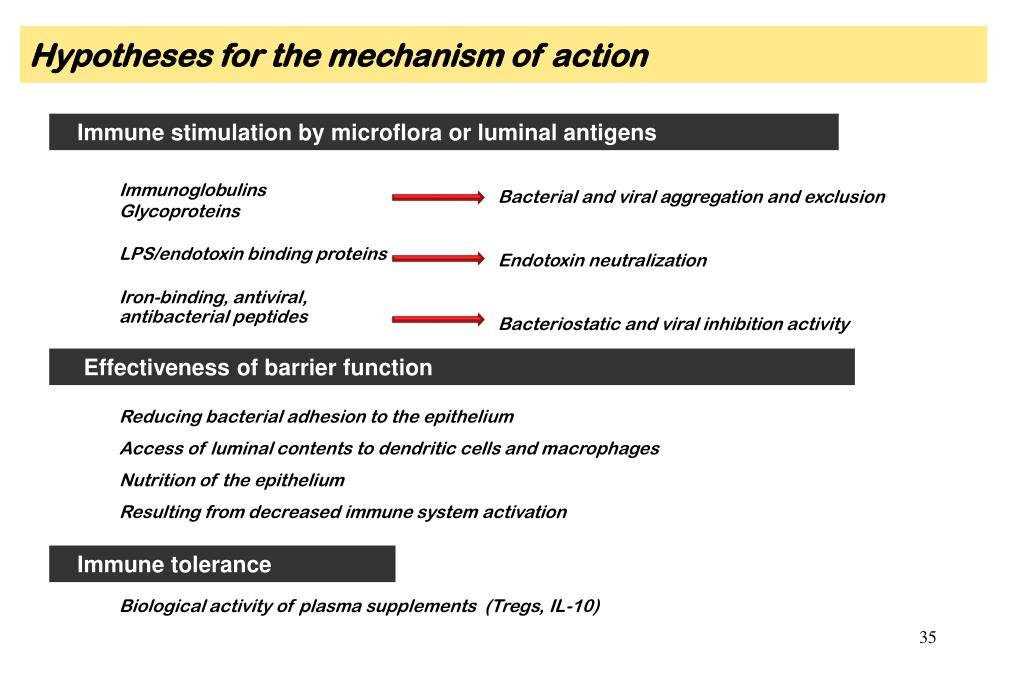 Hypotheses for the mechanism of action